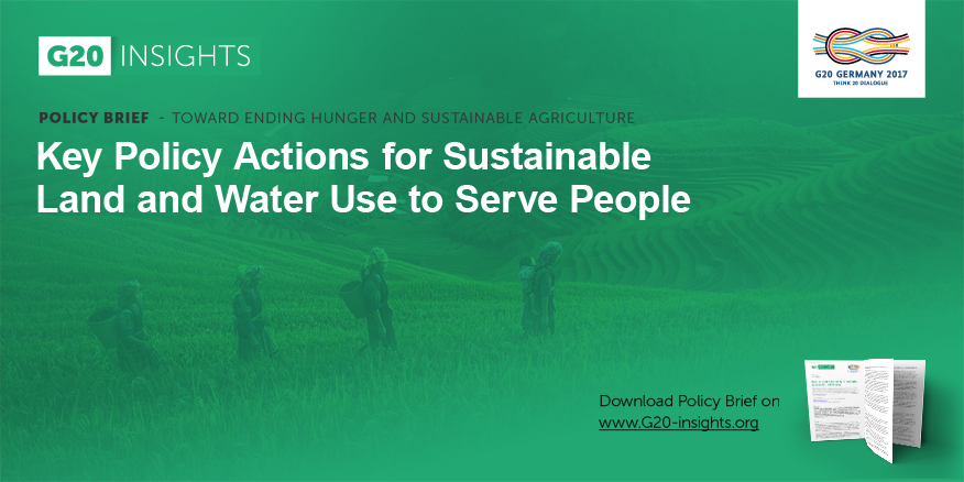 Example policy brief water use in