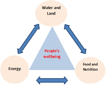 Triangle with water/land, energy, food/nutrition linked to each other with arrows